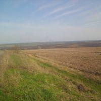 Николаевское поле, Врубовка