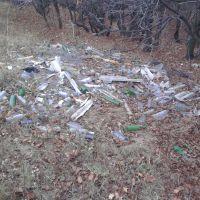 Вот так бережем природу Луганской области..., Горское