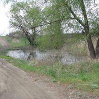 Высохший в прошлые годы пруд снова наполнен водой, Есауловка