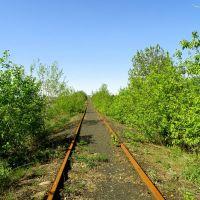 Подъездной путь к шахте Новопавловская в сторону станции., Есауловка