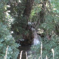 Ручей. A stream., Зимогорье
