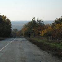 Изгибающаяся дорога. Curved rouad., Золотое