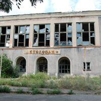 Заброшенная столовая 2009г., Зоринск