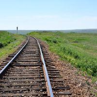 176 км   Северск-Лихая, Изварино