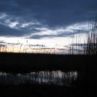 Закат на родине, Калиново