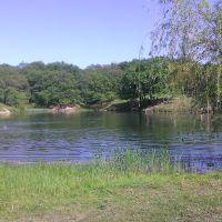 За ставком парк, Камышеваха