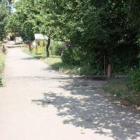 Переулок Менделеева., Кировск