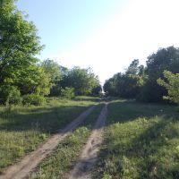 Весенняя дорога, Кировск