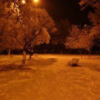 ● Парк возле ДК Химика (зима), Коммунарск