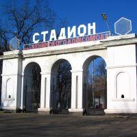 Наш стадион, Краснодон