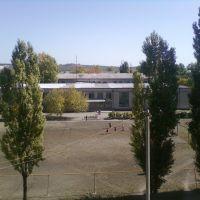 ШКОЛА №-8., Краснодон