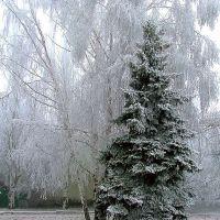 Зимняя фантазия, Красный Луч