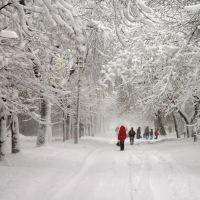 ул.Литвяк зимой, Красный Луч