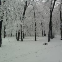 Парк возле ДК, Красный Луч