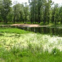 Река Красная. Кременная. (10.05.2014), Кременная