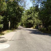 Дорога на Северодонецк, Лисичанск
