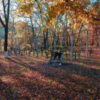Осень и остатки павильона, Лисичанск