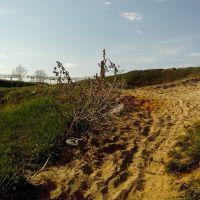 Песчаный берег, Лисичанск