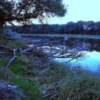 Озеро Призраков вид с середины озера,сумерки, Лисичанск