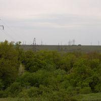 Power line & trees, Лисичанск