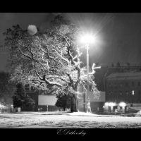 """под снегом, Луганск"