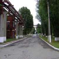вид в сторону пешеходного моста, Лутугино