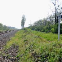 118 км   Северск-Лихая, Лутугино