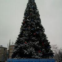 Новогодняя ёлка, Лутугино
