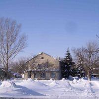 Зимний садик, Марковка