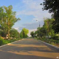 Центральная улица, Марковка