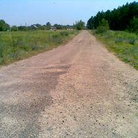 дорога в грибной лес (справа), Новоайдар