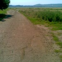 дорога к столикам и одинокому дереву, Новоайдар
