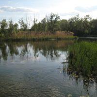Река Айдар. Ajdar river., Новоайдар