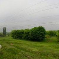 Вид на Павловск, Первомайск