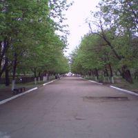 Парк победы (на День Победы все первомайцы здесь), Первомайск