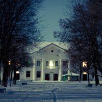 Клуб в парке в районе 40 лет Победы, Первомайск