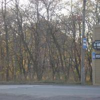шахта  81, Ровеньки