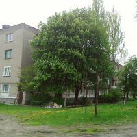 ул.Фрунзе пос.Черниговский, Ровеньки