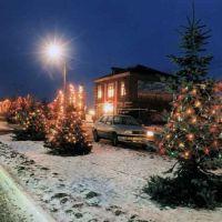 Зимняя ночь, Сватово