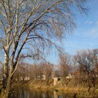 Осіння річка 2010, Сватово