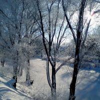 Перед різдвом 2011, Сватово