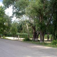 Купальня біля школи, Сватово