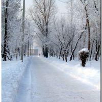 Зимняя аллея, Северодонецк