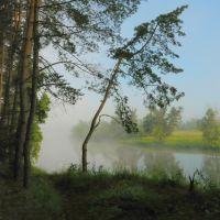 Туман, Славяносербск