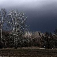 Будет снег, Славяносербск
