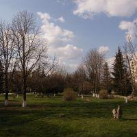 Парк, Славяносербск
