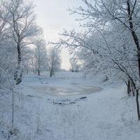 7 марта, Славяносербск