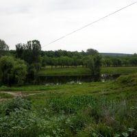 Большое озеро, Славяносербск
