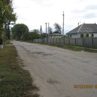 Дорога от Интерната, Станично-Луганское