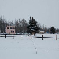 Конный клуб, Станично-Луганское